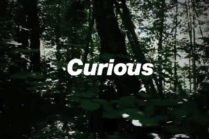 Curious-feature-1024px